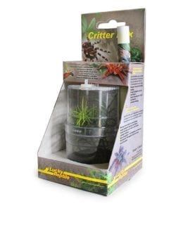 LR Critter Box (WITH AFRICAN MANTID) CB-1