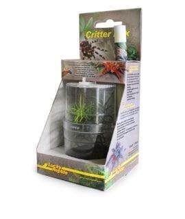 LR Critter Box (WITH CURLY HAIR TARANTULA SPIDERL)
