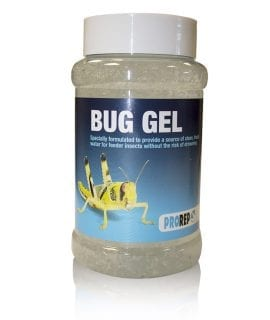 PR Bug Gel Jar Pack, 500ml