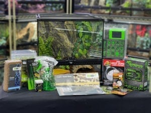 OUR Adult horned frog kit (day & night heat)